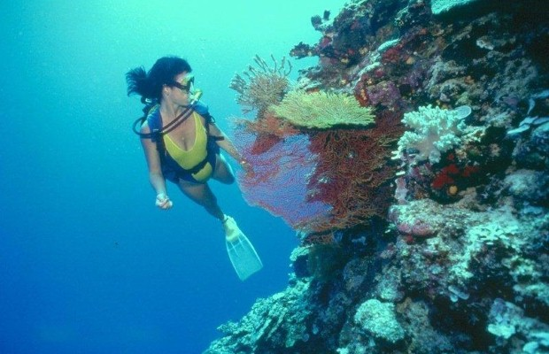 New diving destinations in Oman