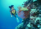 Best UK scuba diving sites (photo: Thinkstock)