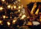 Christmas holiday ideas