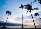 Cruises to Hawaii on offer