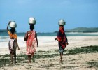 Experience Kenya's traditional culture in Lamu