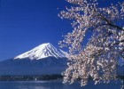 Mount Fuji draws guests to Japan