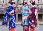 Visit the sights of Japan