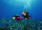 Visitors can try scuba diving in Vanuatu