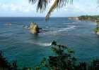 Whale watching in Dominica is explored in the new documentary