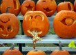 Celebrate Halloween 2011 at one of these spooktacular events across the globe (photo: Thinkstock)