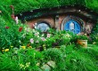 Head to Hobbiton in New Zealand