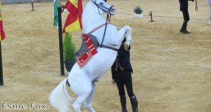 Andalucia is known for its horse breeds and equestrian styles