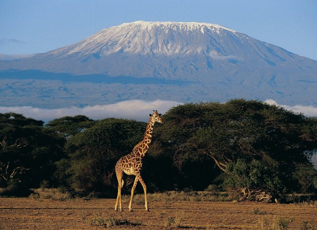 Challenge yourself to a Kilimanjaro trek