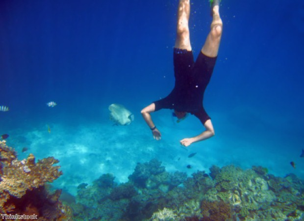 Go diving in Cairns on a world cruise