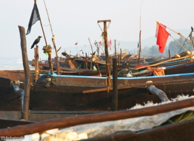 Traditional fishing boats are used in Baga