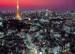 See the wonderful Tokyo Tower